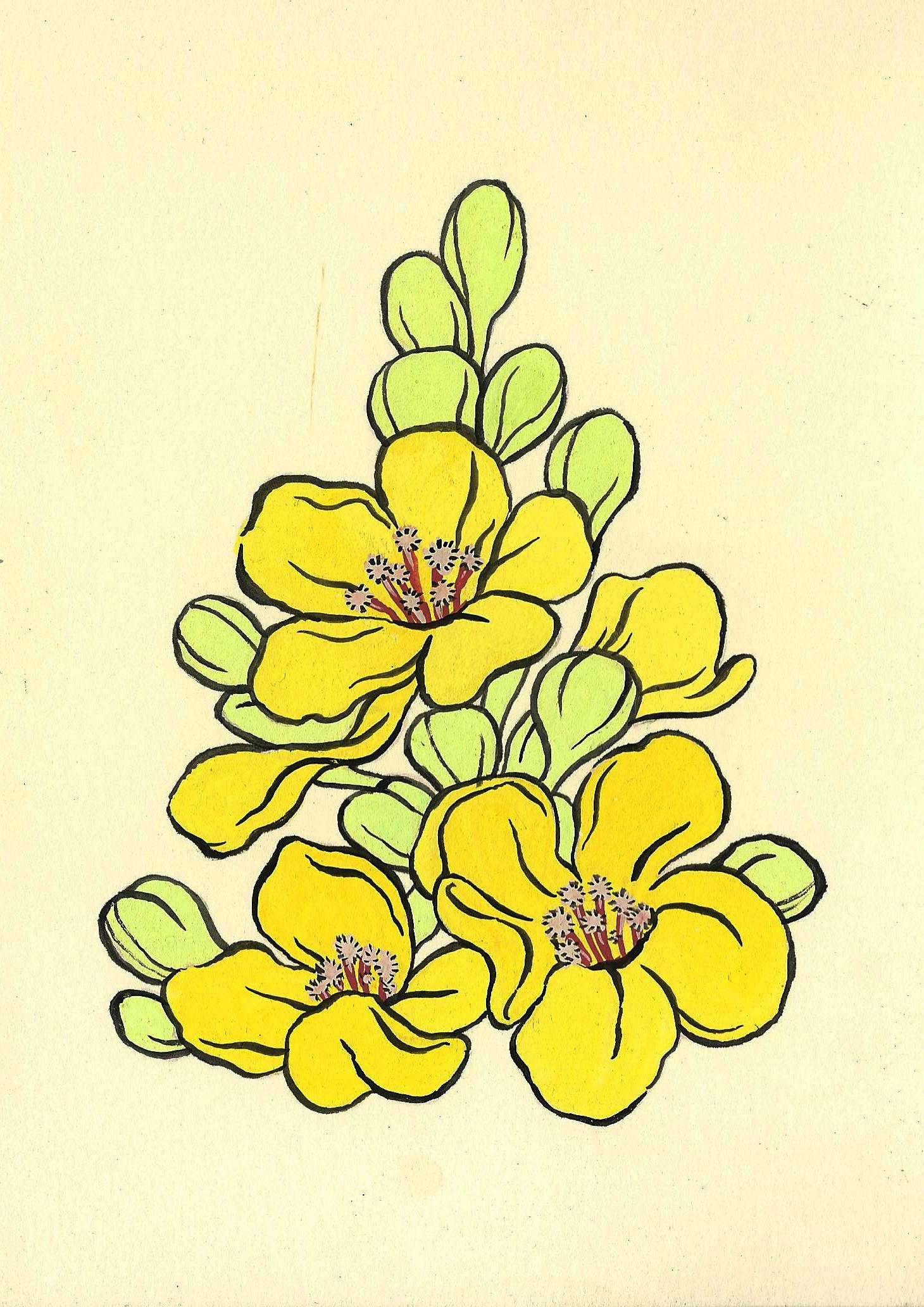 botanical1.jpeg