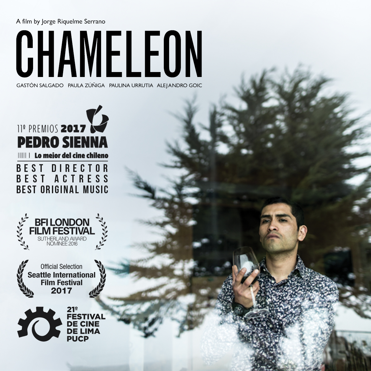 CHAMELEON-website.jpg