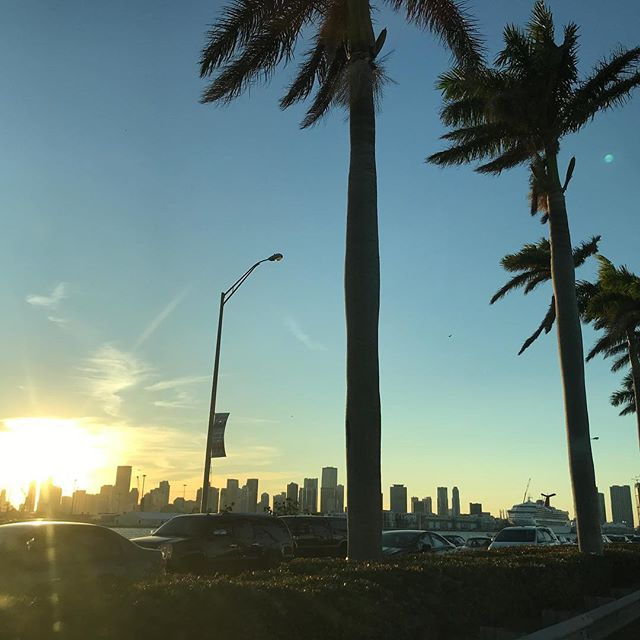 As the sun sets in #MiamiBeach and we run into a little traffic - No problem with these views. 🛳❄️🌞#alwaysBeautifulinMiami #soyoushouldcomevisit #miamiwinter#visitmiami#FoundInMiami#SoMiami#miami#downtownmiami #portofmiami #tourismrocks#miamisunset#tourmiami#miamiattractions#miaminights