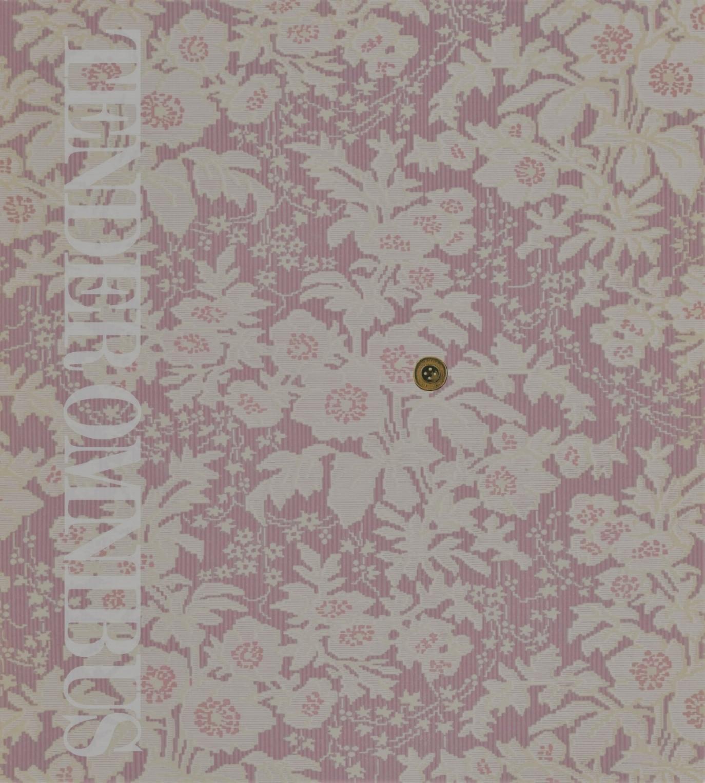 OMNIBUS Cover_Spread for KB website.jpg