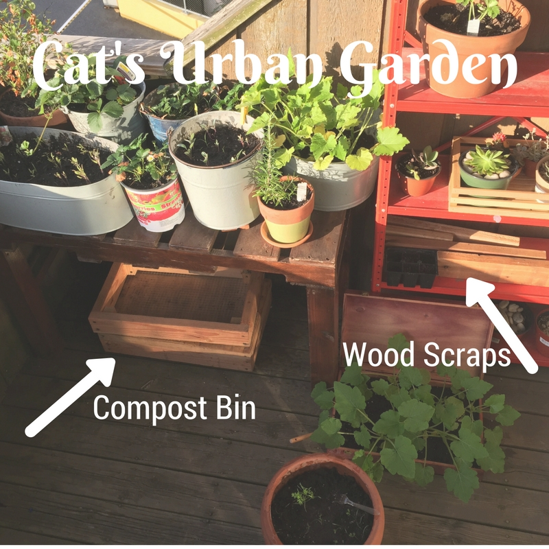 My little urban garden. The compost sits under a table of plants. I originally built two bins, but have only used one so far. I also found some wooden scraps my neighbor were throwing away so I picked up for when I need to build that third bin whenever that may be. It gets sun, but because it's wood, doesn't overheat too much.