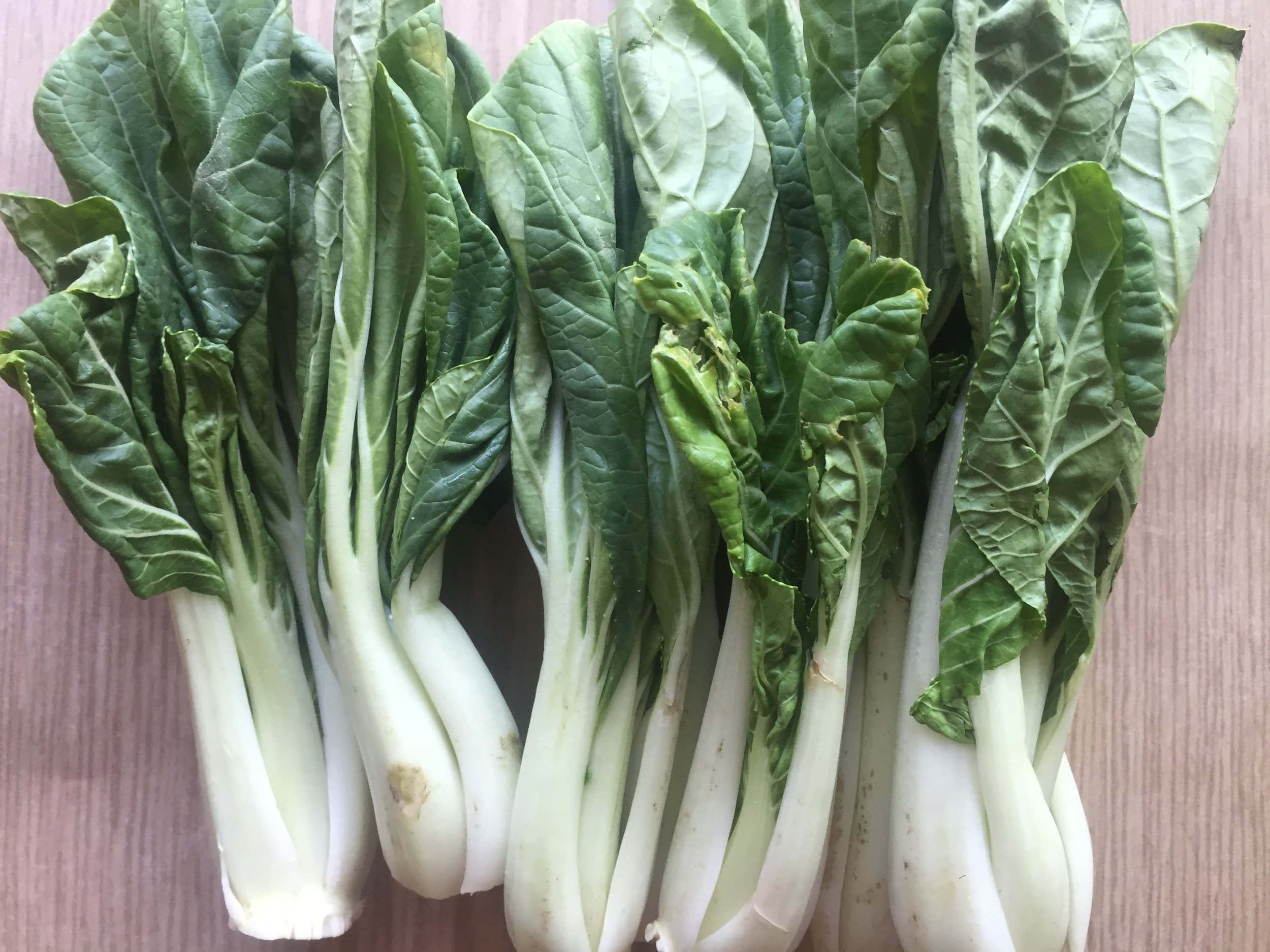 Baby bokchoy can typically be found in Asian grocery stores. Bokchoy is a type of Chinese cabbage. They have a mild taste and are most used in soups.