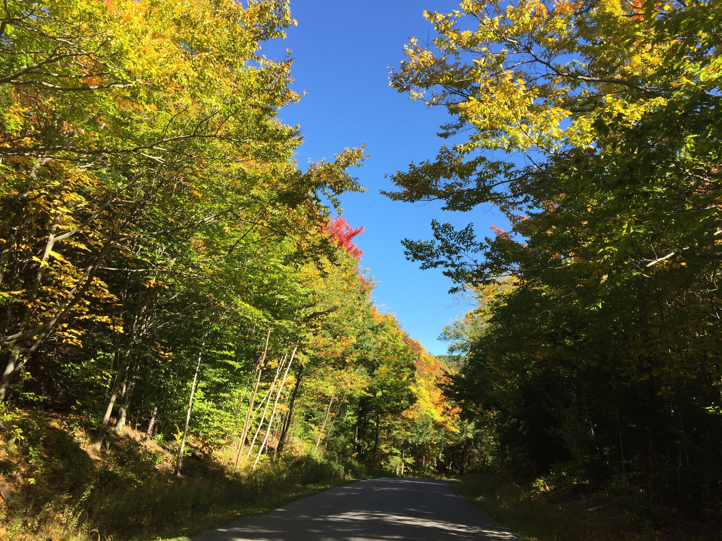 Fall foliage in the Catskills is amazing.