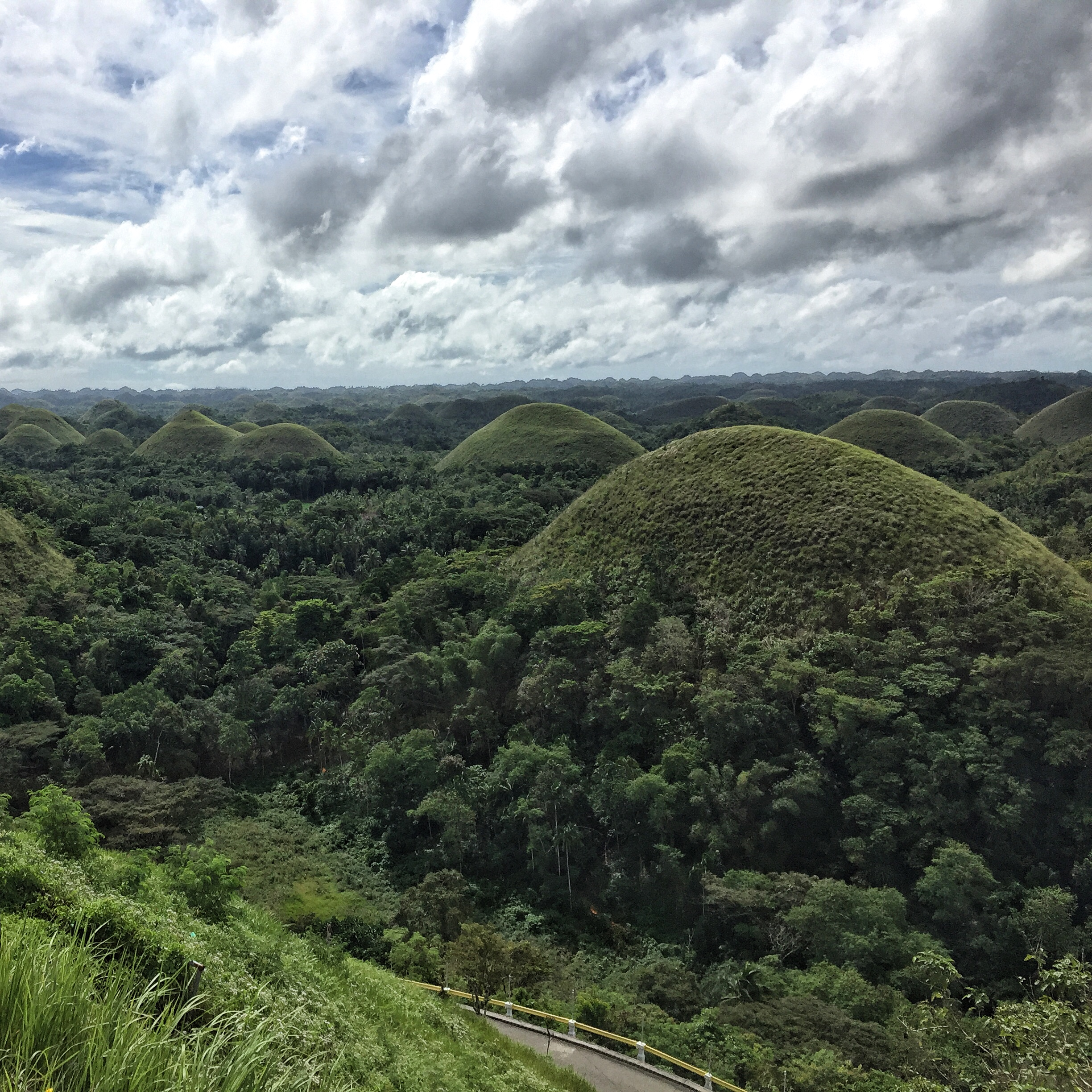The Chocolate Hills though good rain has kept it green and lush.