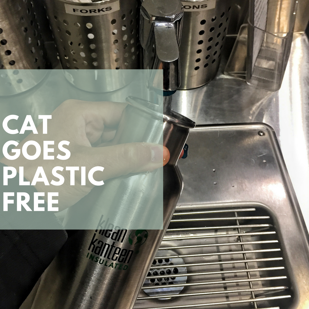 the-do-something-project-cat-goes-plastic-free