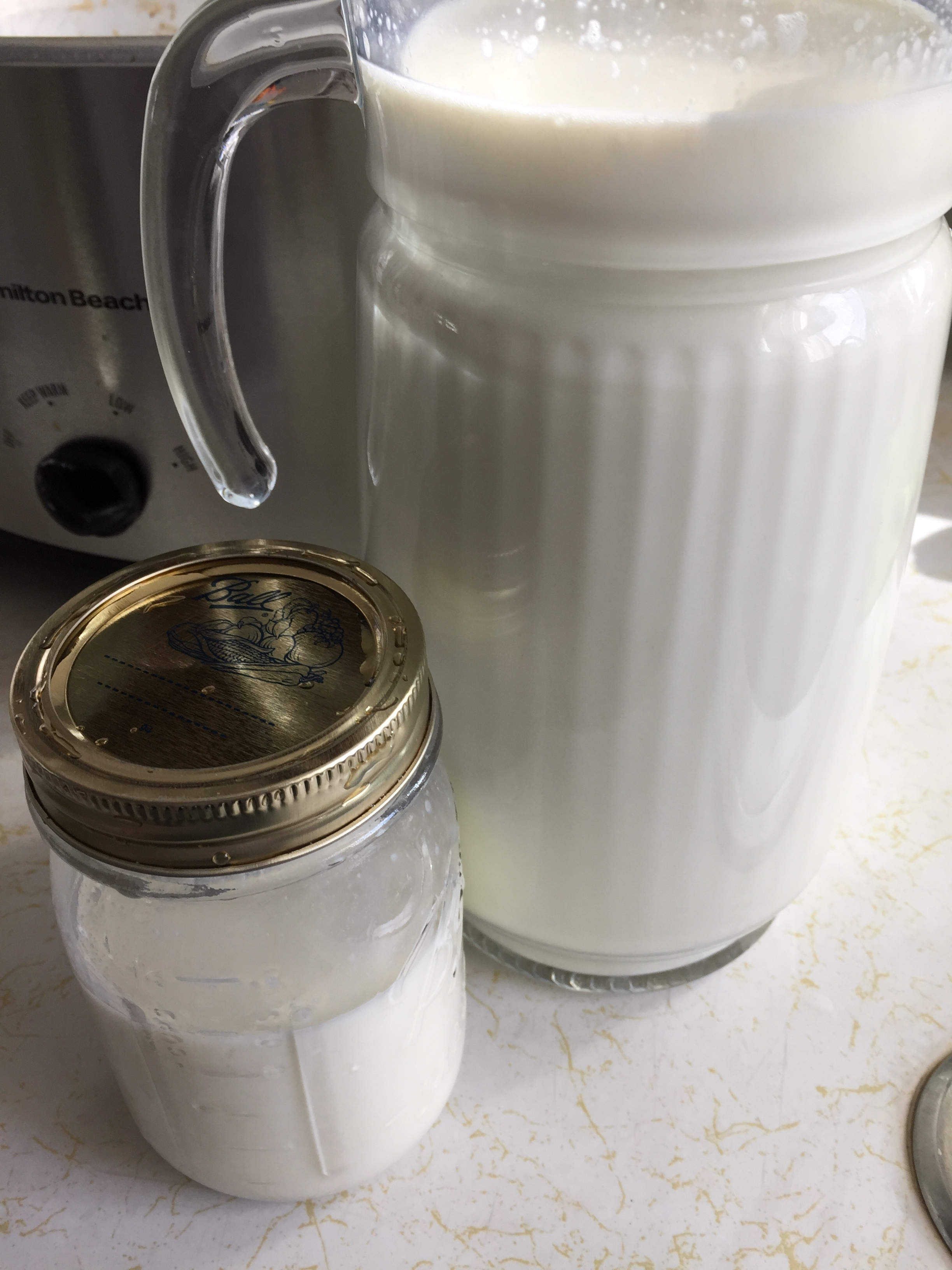 Milk, yogurt, probiotic mixture poured into glass containers to cure.