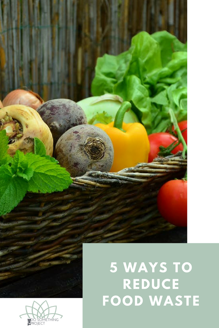 5-ways-reduce-food-waste-save-money-environment.png
