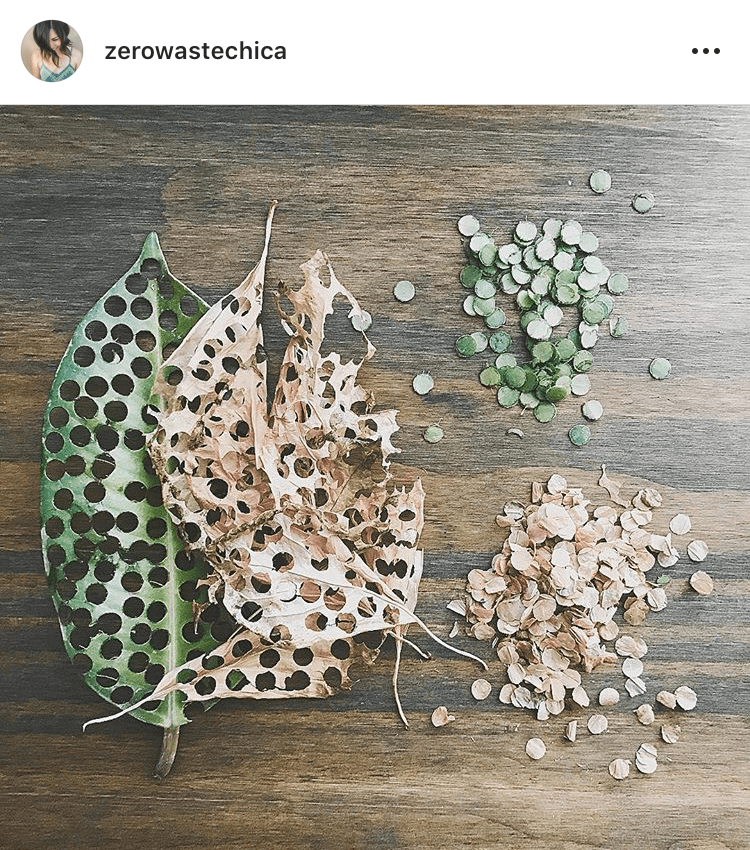 Hole Punching Leaves As Compostable Confetti ( @zerowastechica )