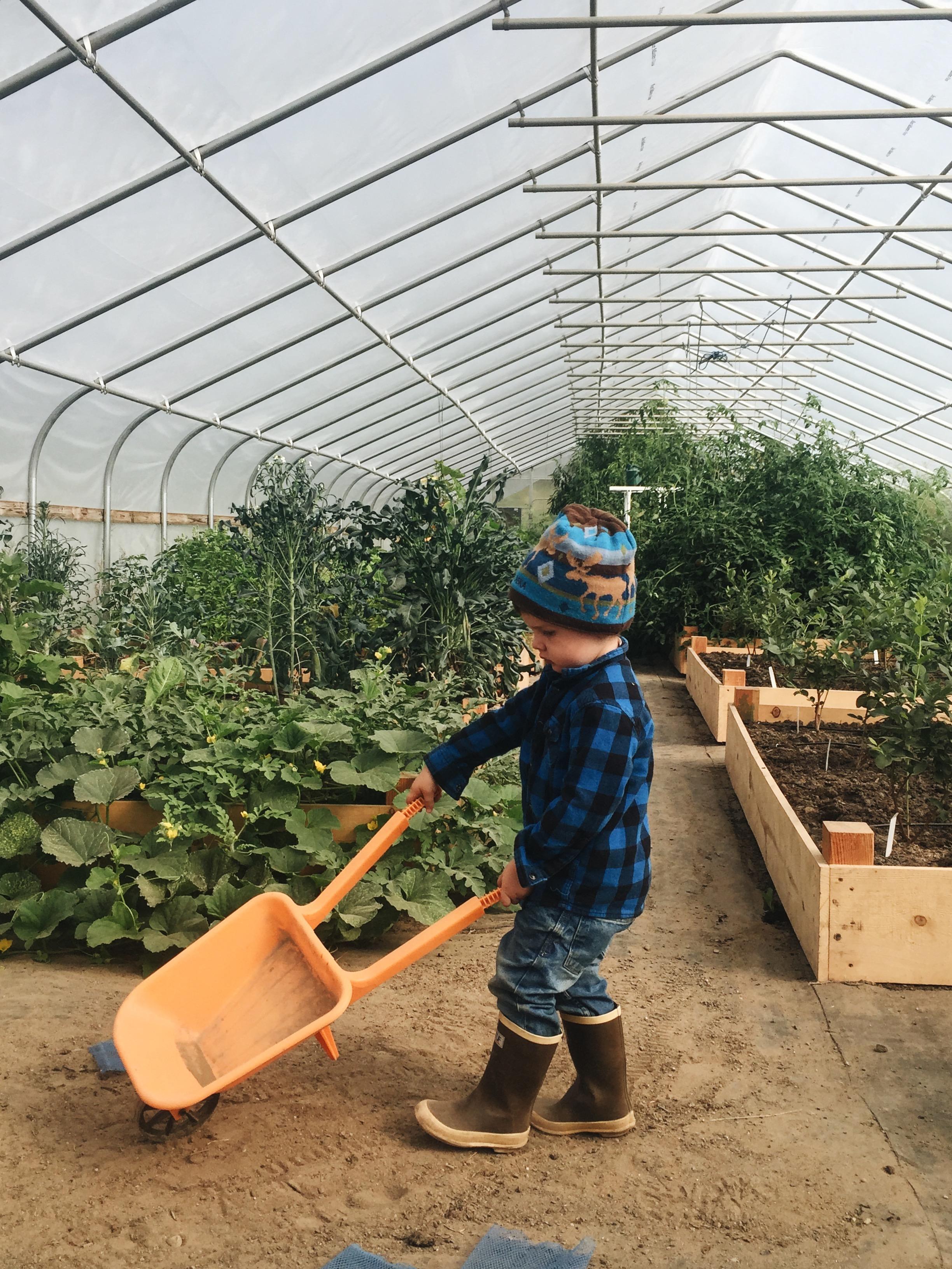 Greenhouse goals.