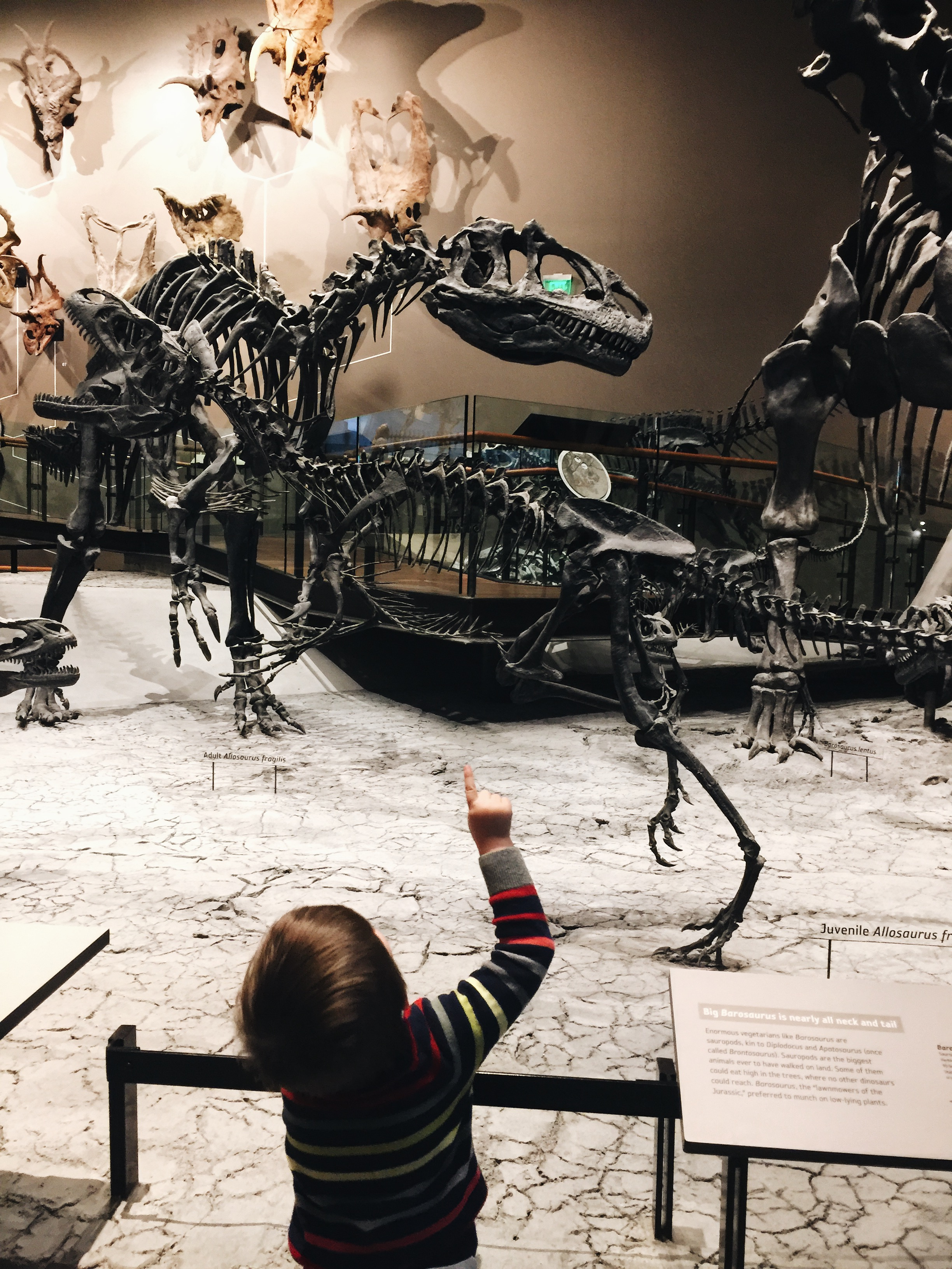 """I love taking my younger son out to experience """"big"""" things."""