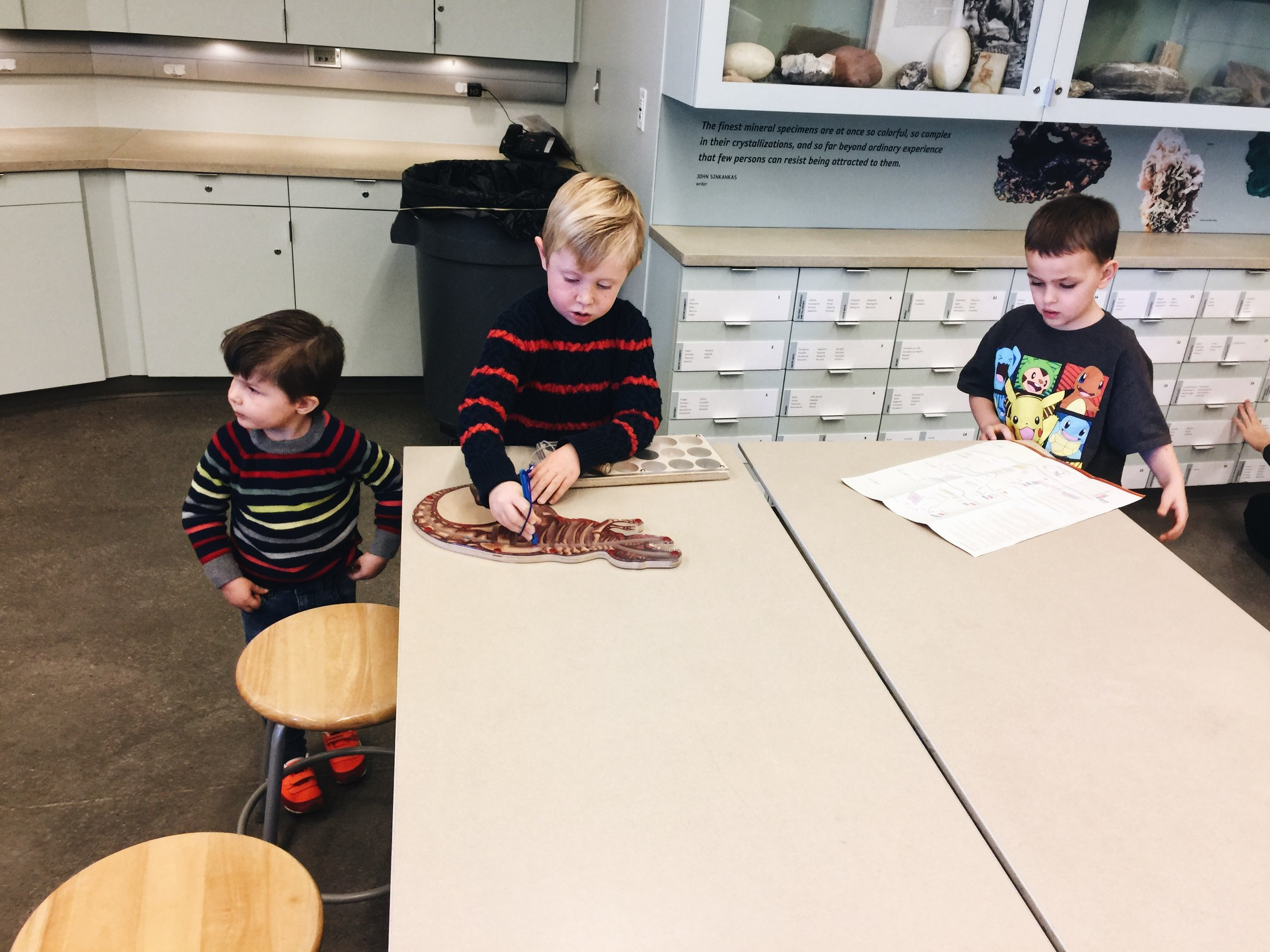 """This """"lab"""" is so neat! So many interactive items for them to explore."""