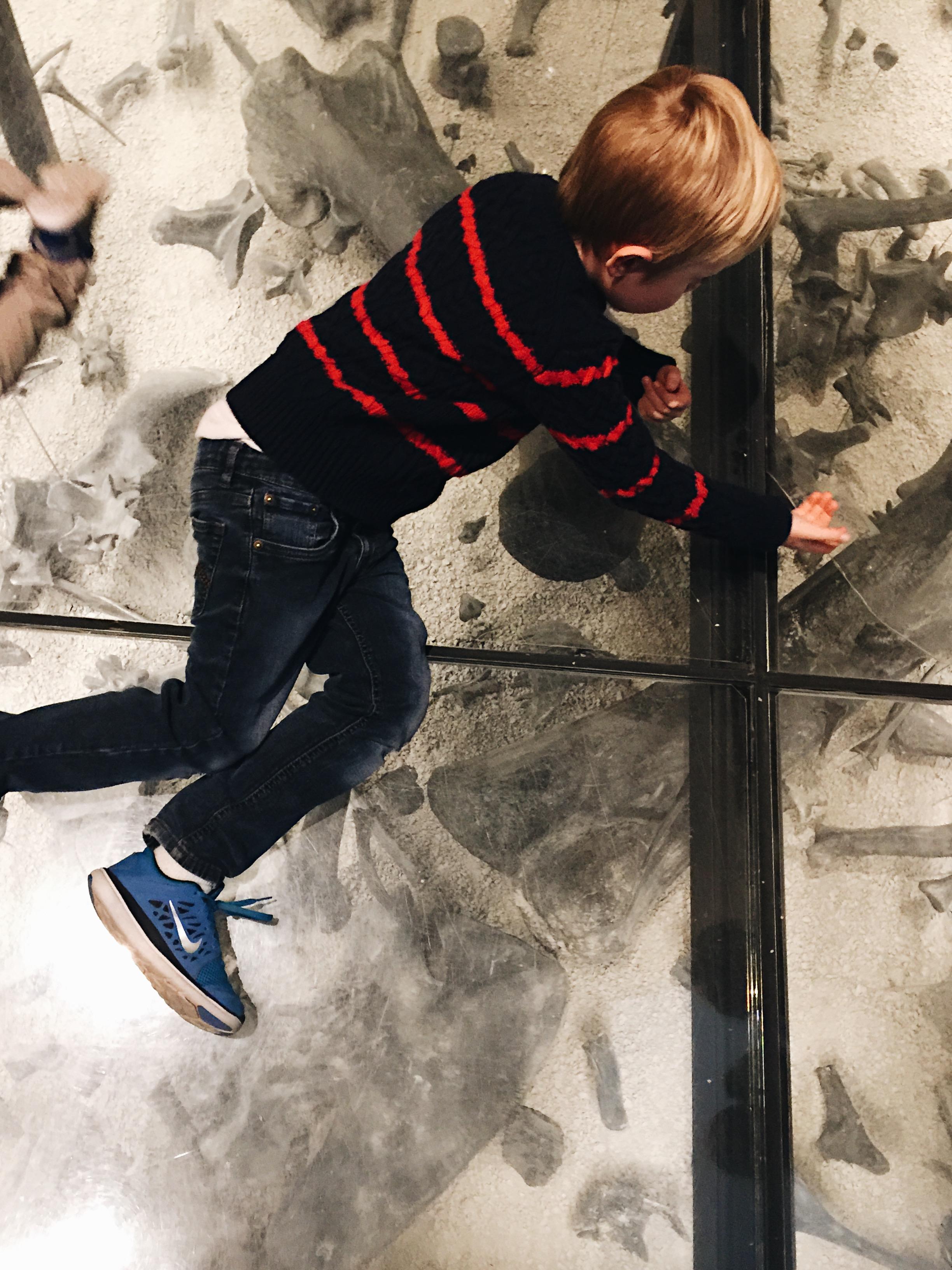 Coolest dinasaur dig that we could walk on!