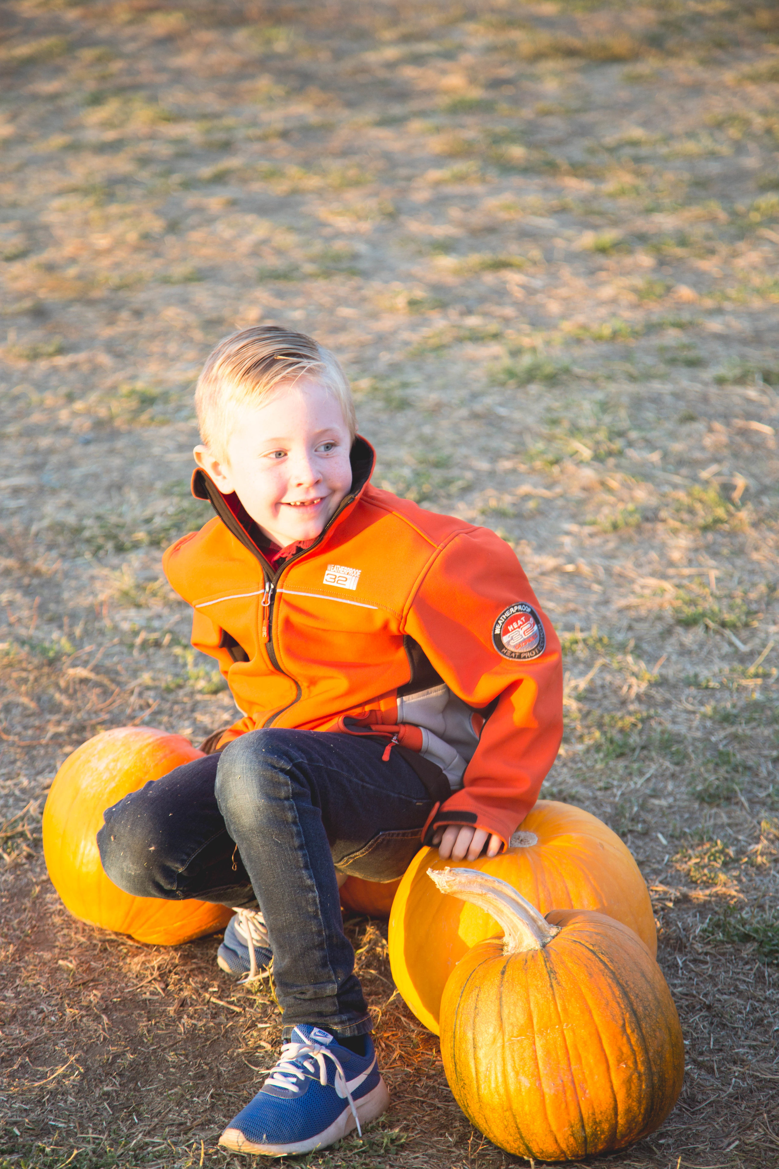 matthew pumpkin patch2-1.jpg