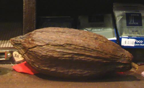 2012 Sept 8 4132 chocolate pod 2_72