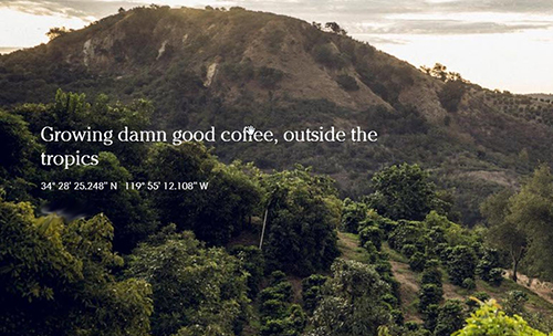 Frinj Coffee company website banner, https://frinjcoffee.com/