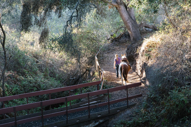 Hope-Ranch-horse-trails.jpg