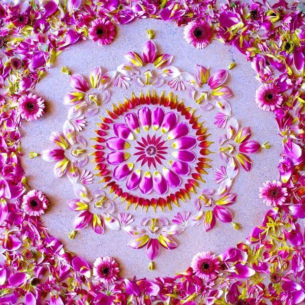 fb7e01690eb66580629408c24005a24a--mandala-flower-mandala-art.jpg