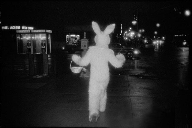 Gilles_Peress_bunny.jpg