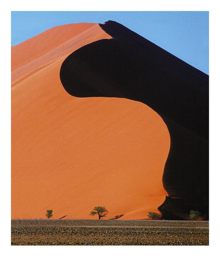 marchoberman_Dune.jpg