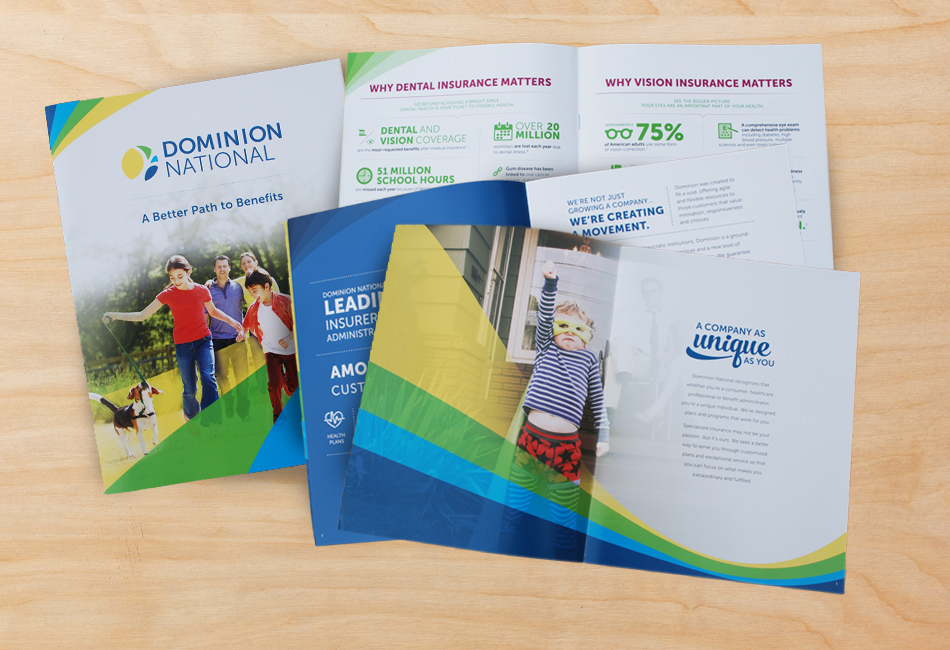 Dominion National Corporate Brochure