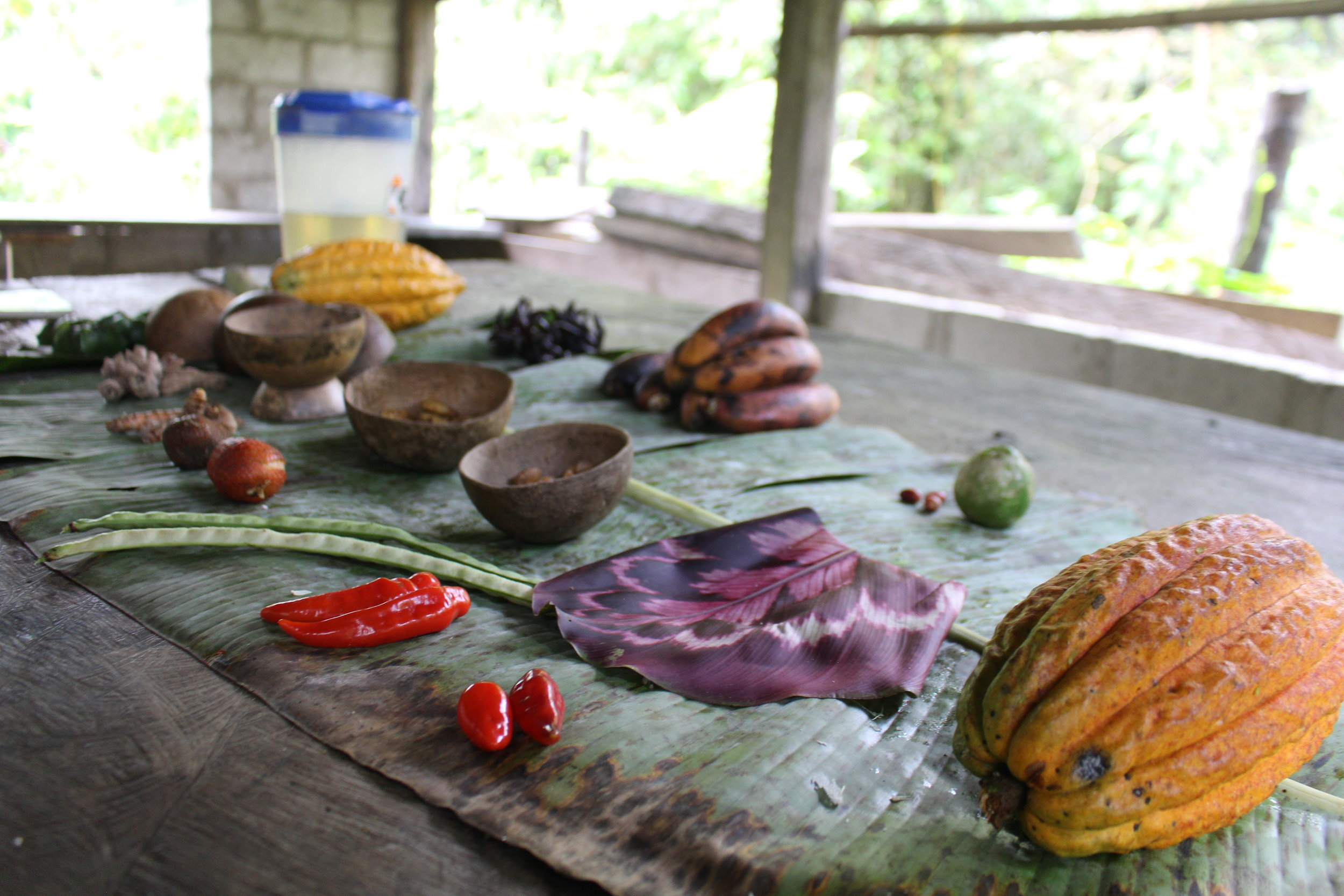 Amazonian Forest Foods and Culinary Arts -