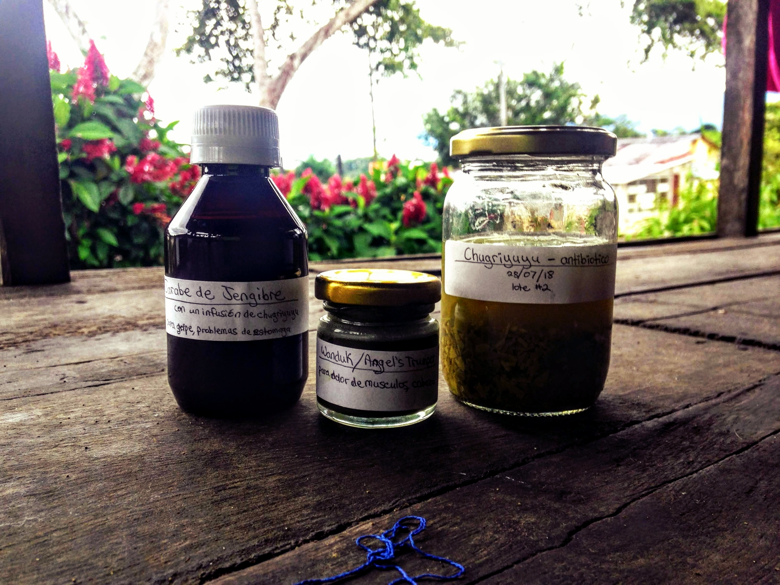 Traditional Indigenous Midwifery and Amazonian Plant Medicine -