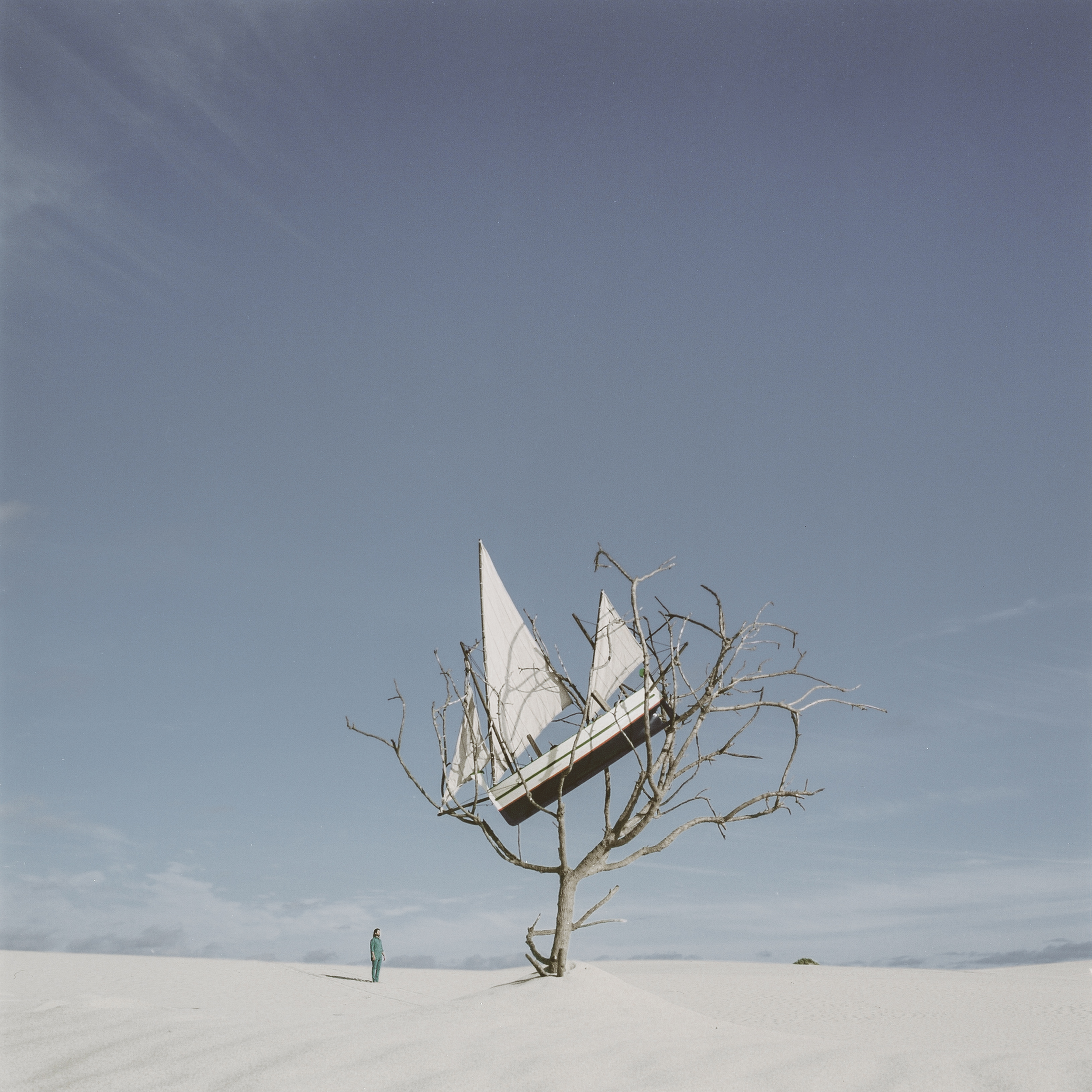 Boat in Tree