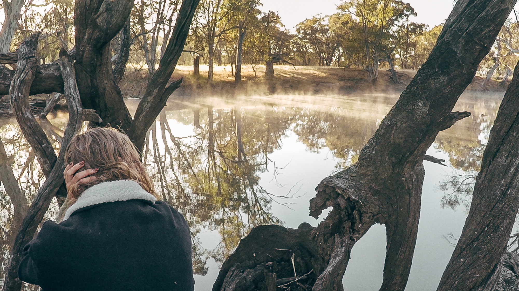 Bilby on a tree, watching as the morning mist rolls over the gentle ripples of the Wimmera  2017