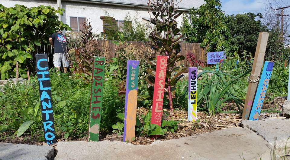 Crop markers painted by members of Proyecto Jardin's Food Growers Collective, 2013, using Zero VOC paint to prevent soil contamination.