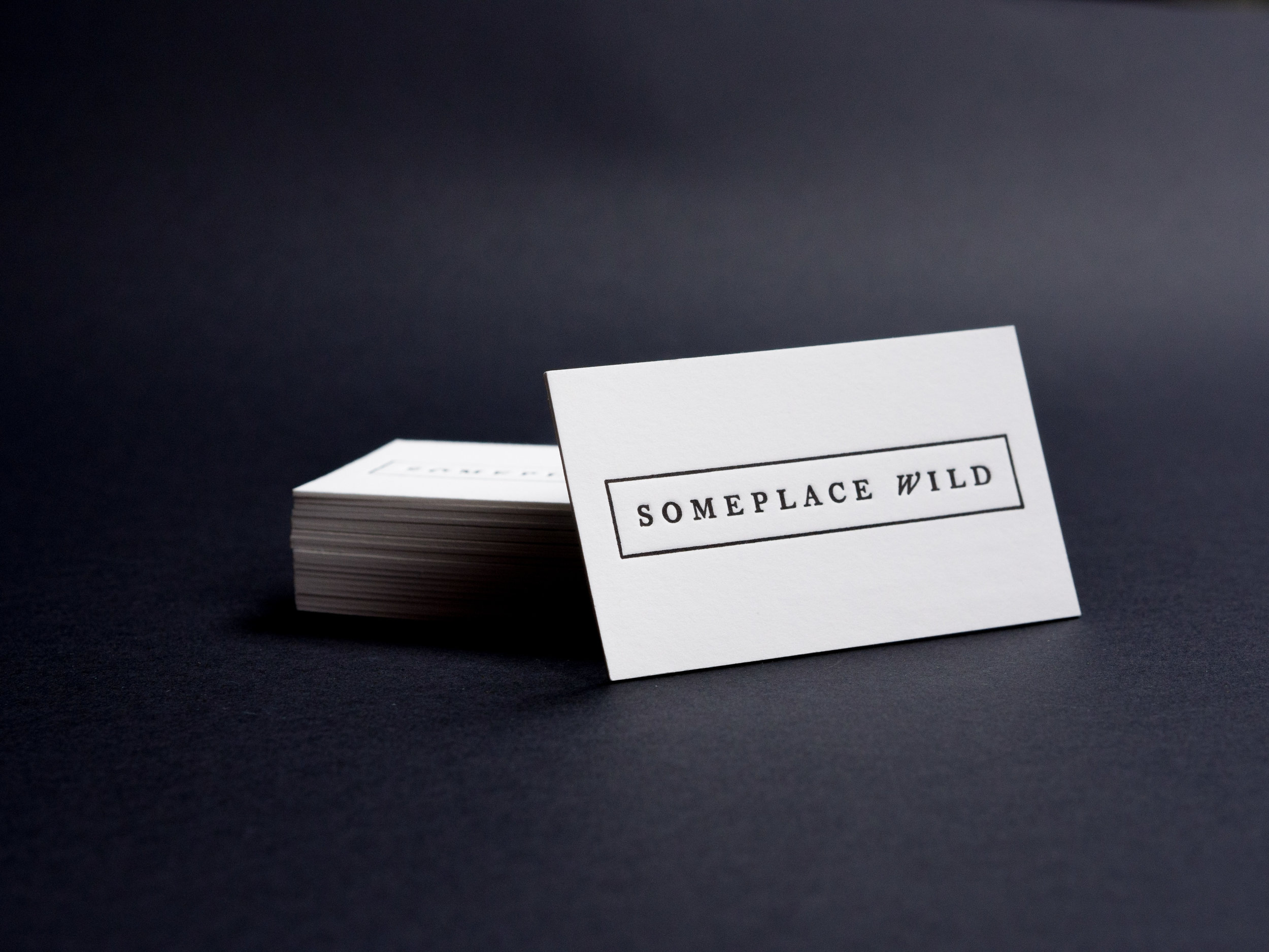 For The Press - Someplace Wild Cards.jpg