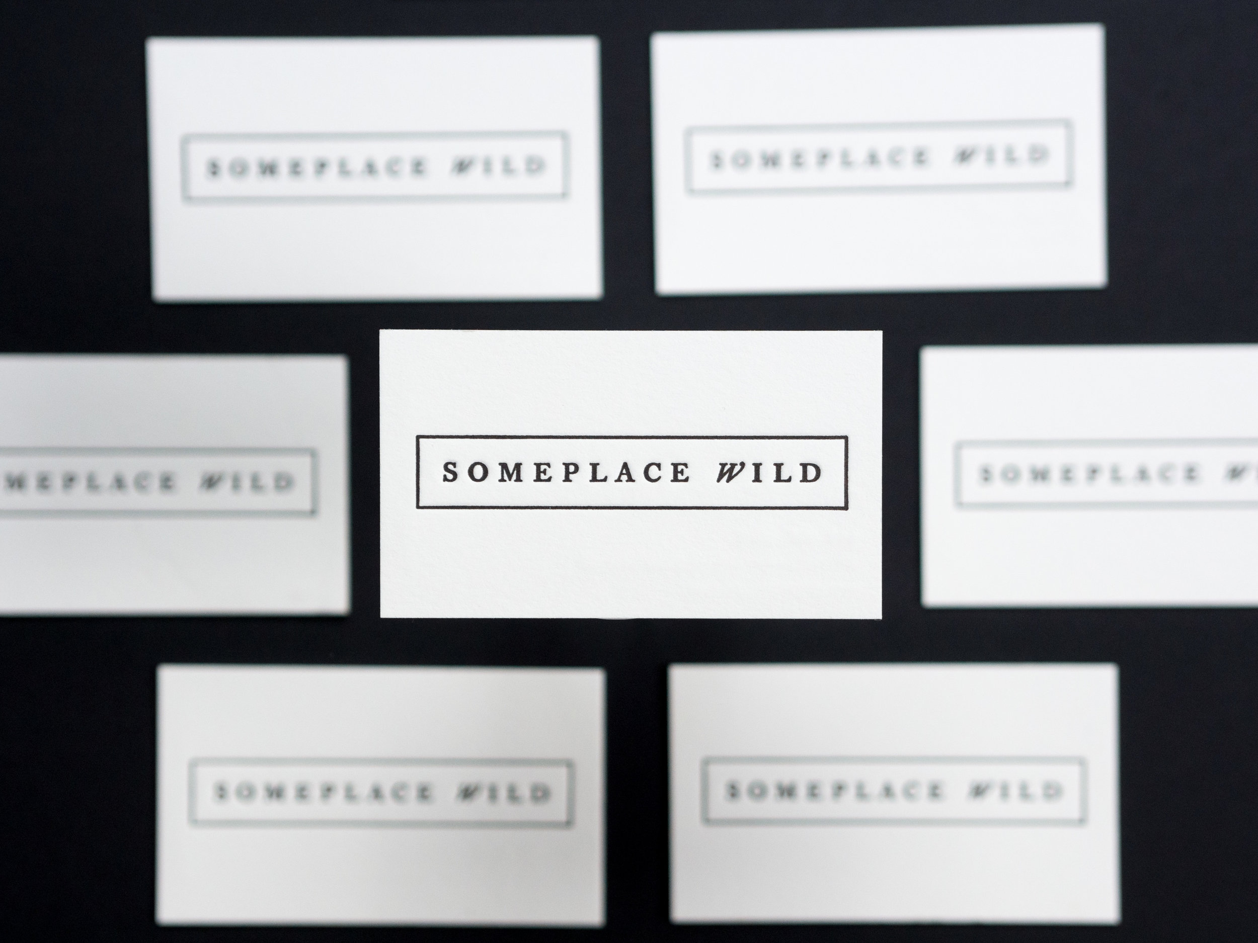 For The Press - Someplace Wild Cards-5.jpg