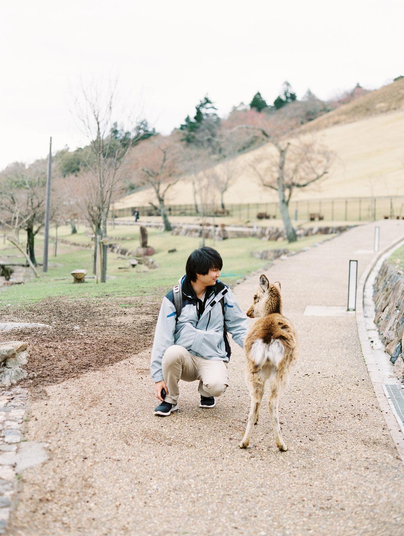 StephanieGanPhotoJapan-03.jpg