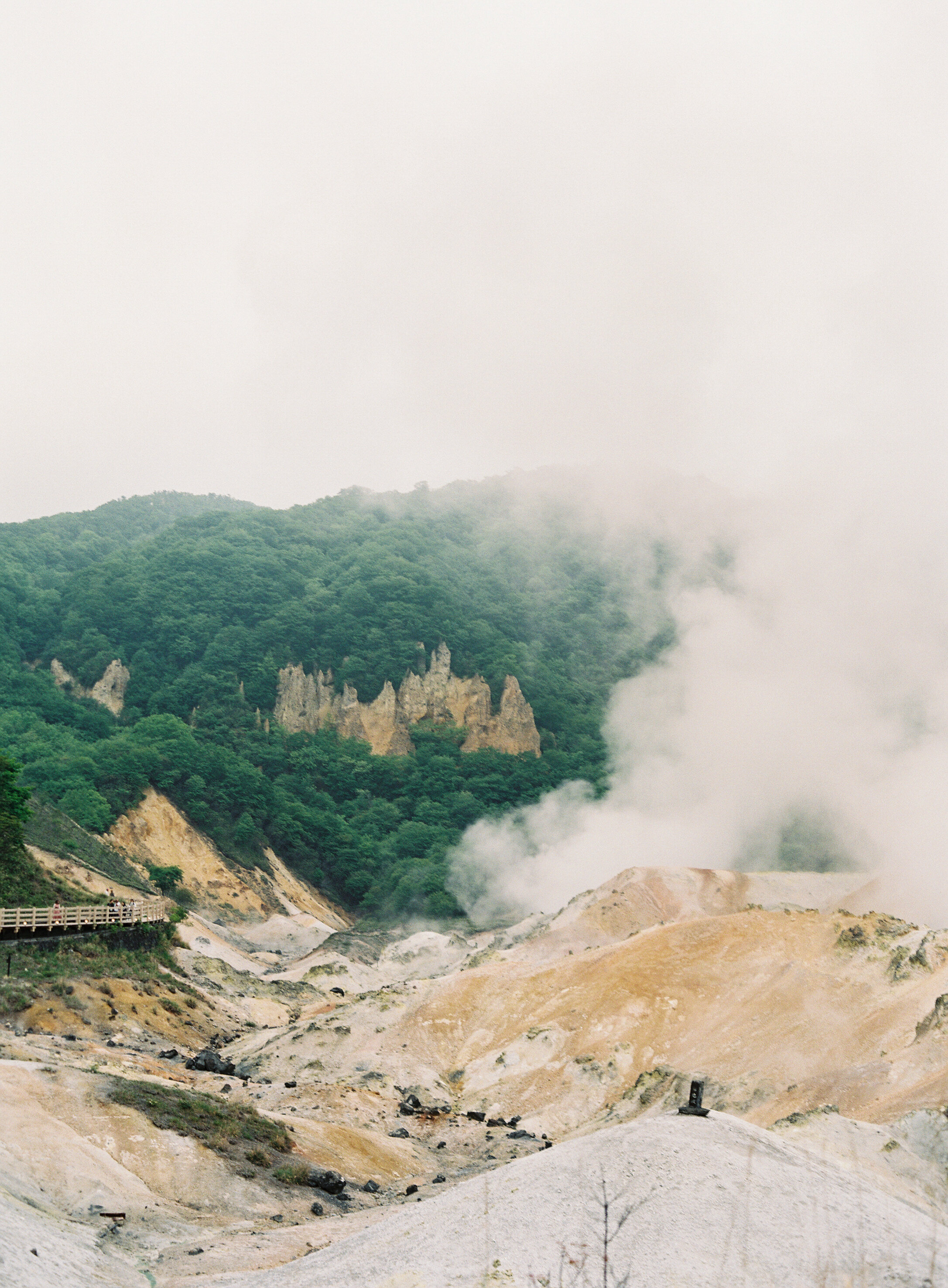 StephanieGanPhoto_Hokkaido-090.jpg