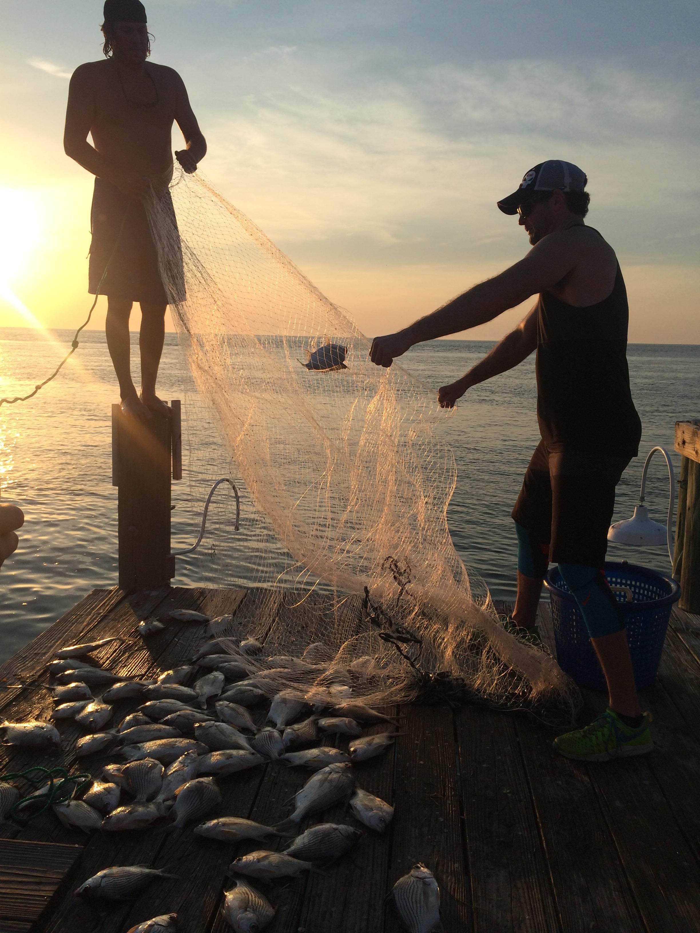 net fish.jpg
