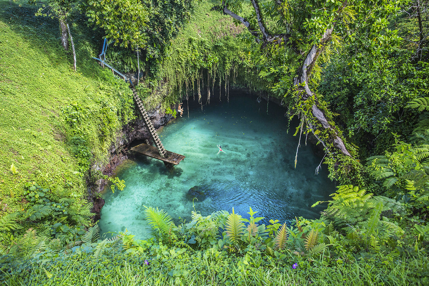 Upolu_To Sua Ocean Trench Background_1500px.jpg