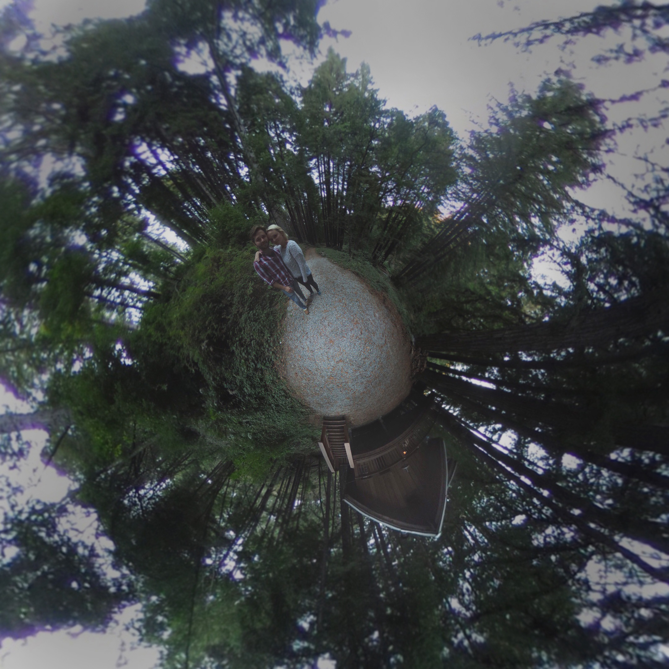 Woods Cabin 3.jpg