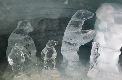 icepalace.jpg