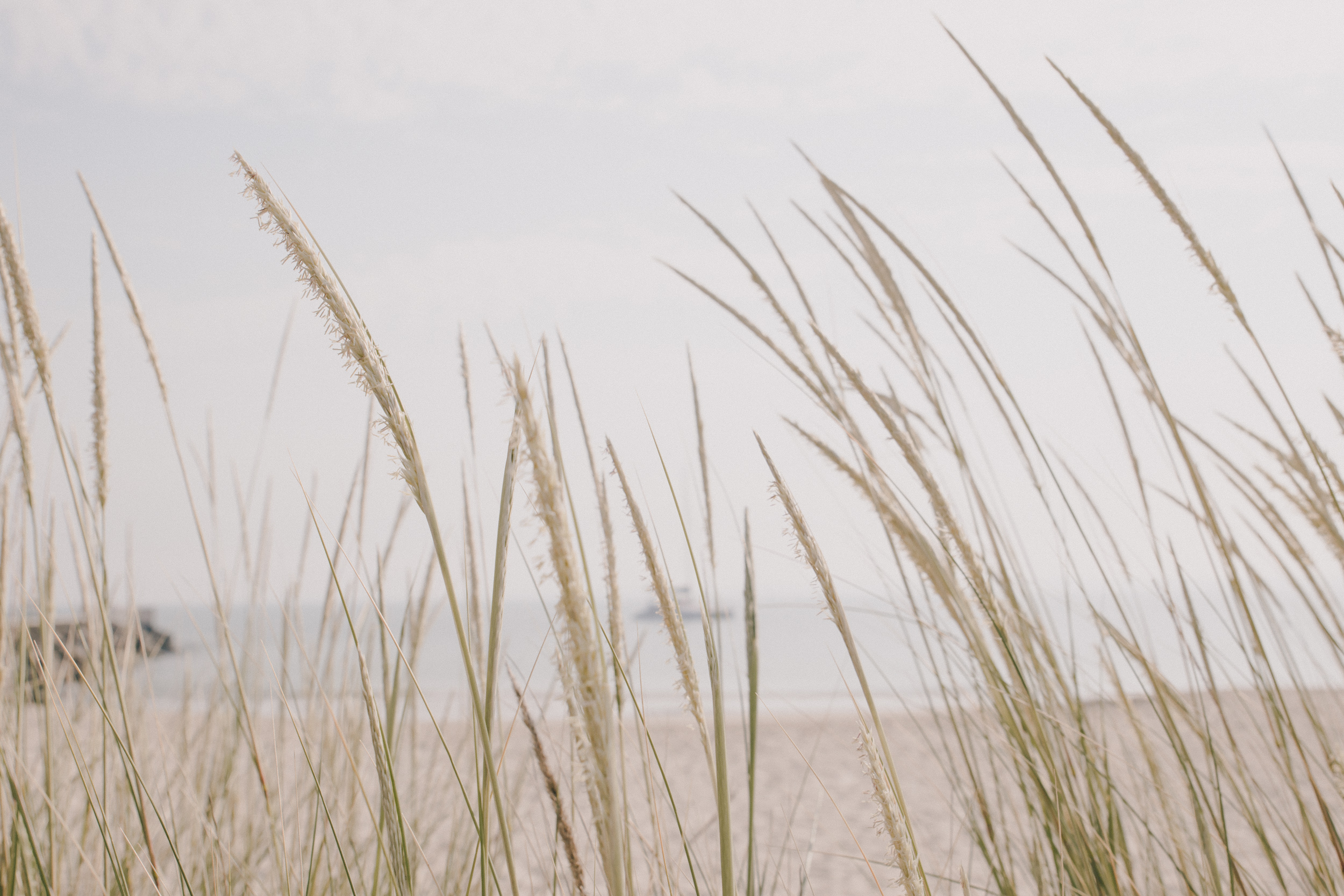 Bunbury beach-6