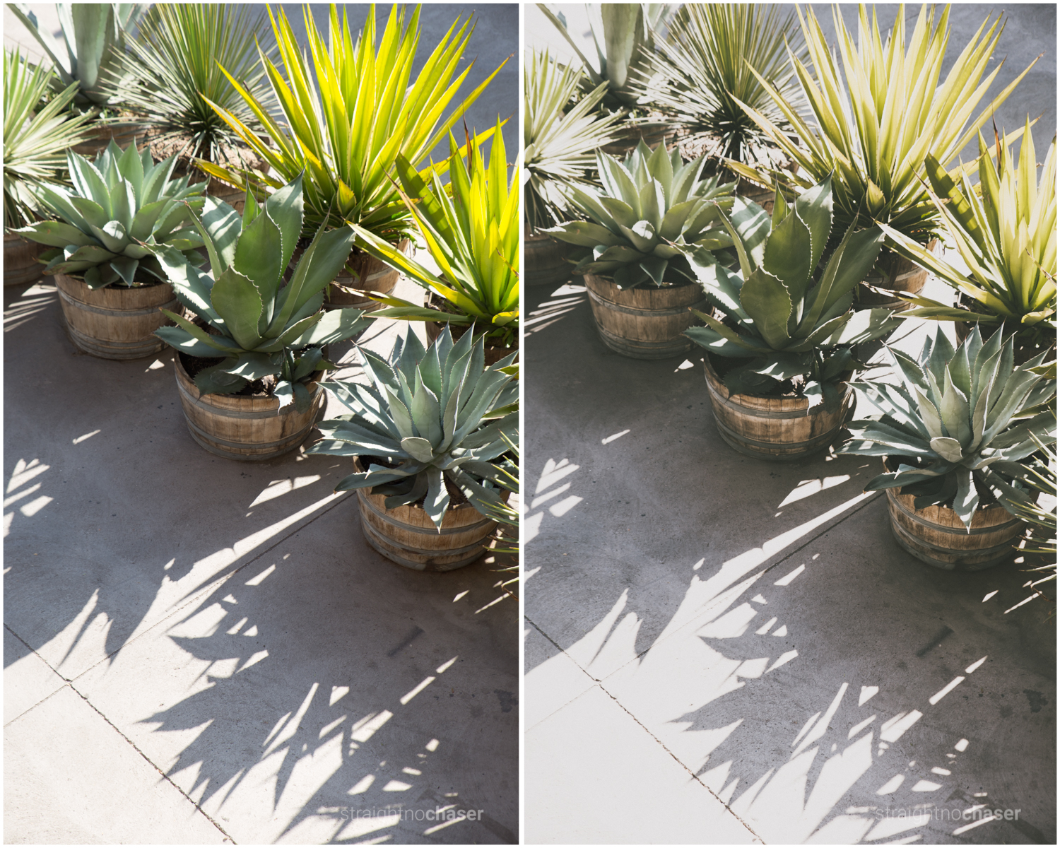 Afternoons in Santiago, Chile. Unedited RAW   (left) M/Mellow Preset + (right)
