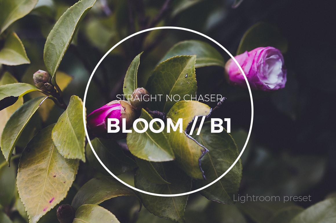 F2 (BLOOM 1) preset: How To Achieve in Lightroom