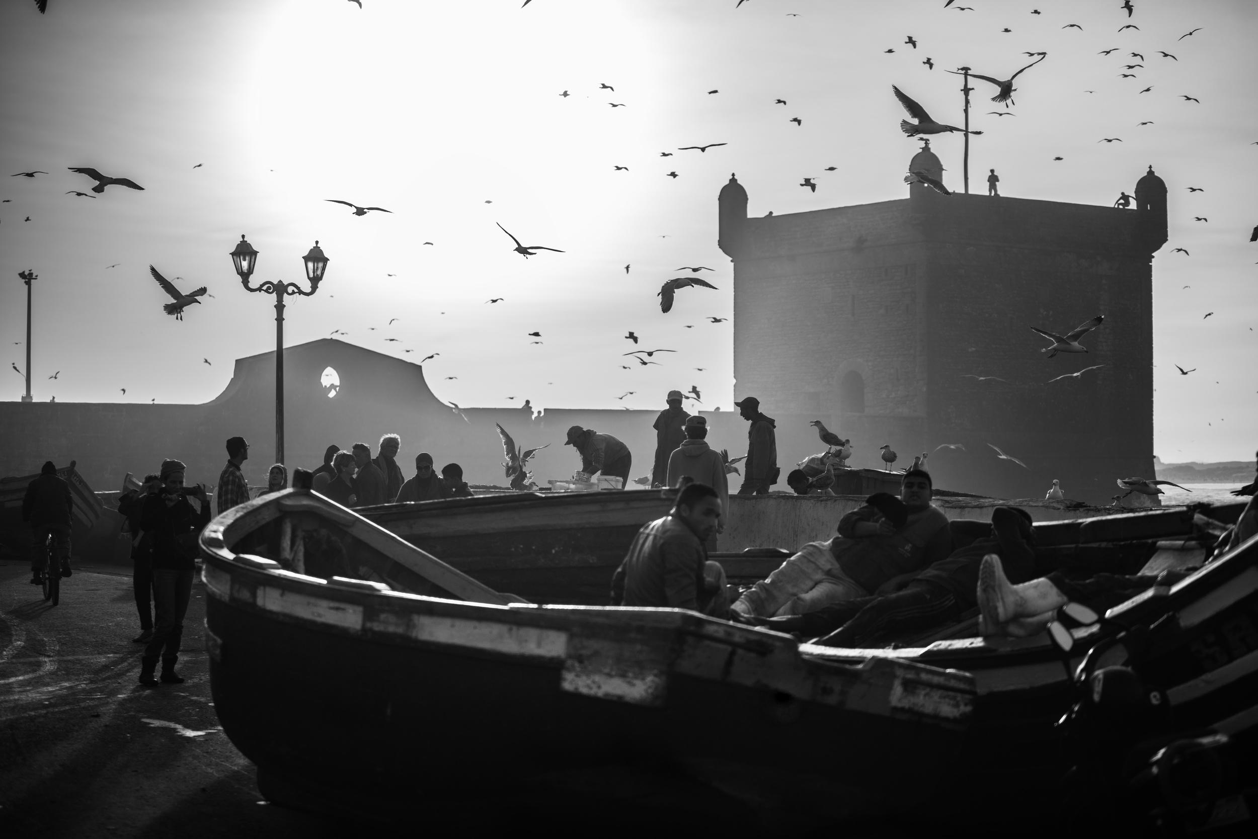 Essaouira-Morocco01.jpg