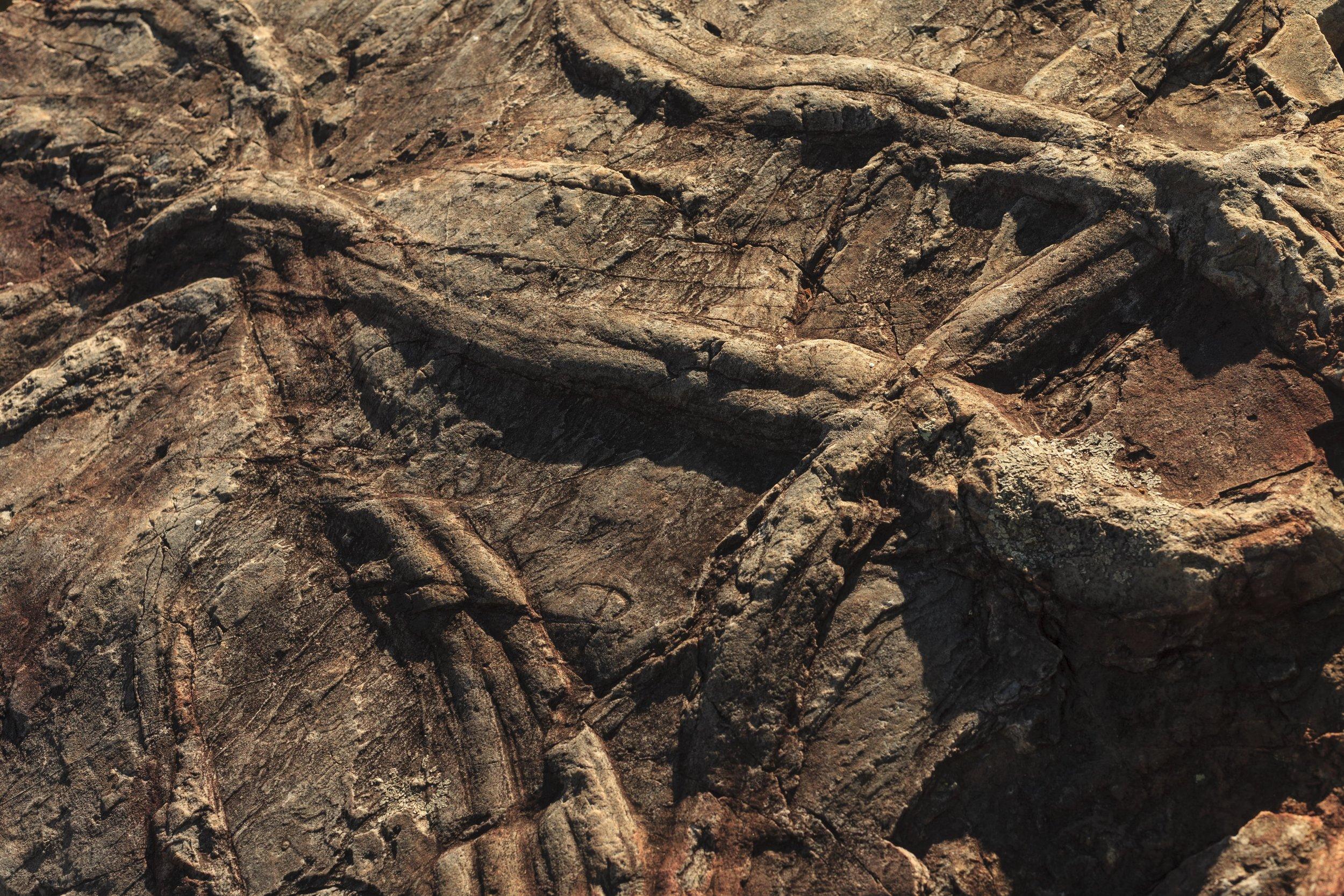 Penha Garcia | Fósseis Cruziana IV