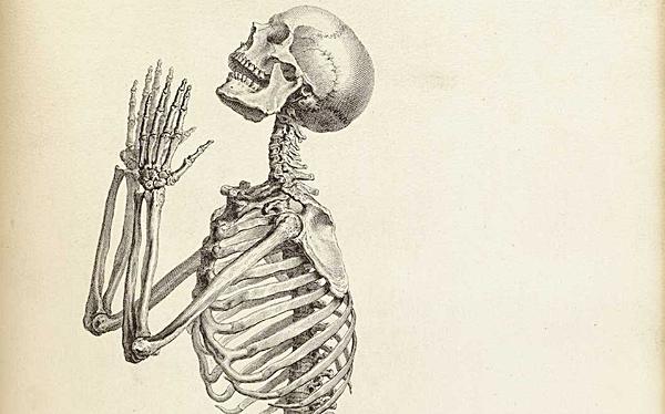 Old-Anatomy-Drawings-Praying-Skeleton.png