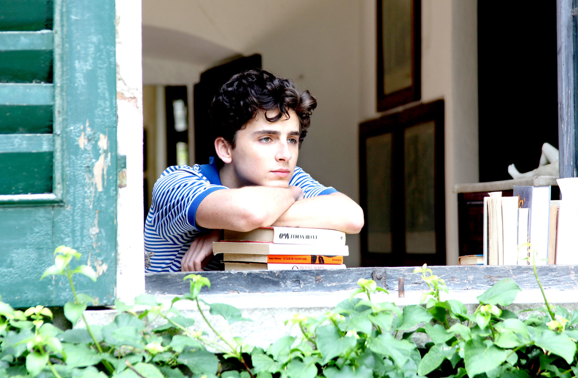 call-me-by-your-name-timothee-chalamet-e1516276791246.jpg