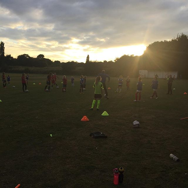 Great turnout for the @bhfc_lionesses at Friday night training. @buckhurst_hillfc