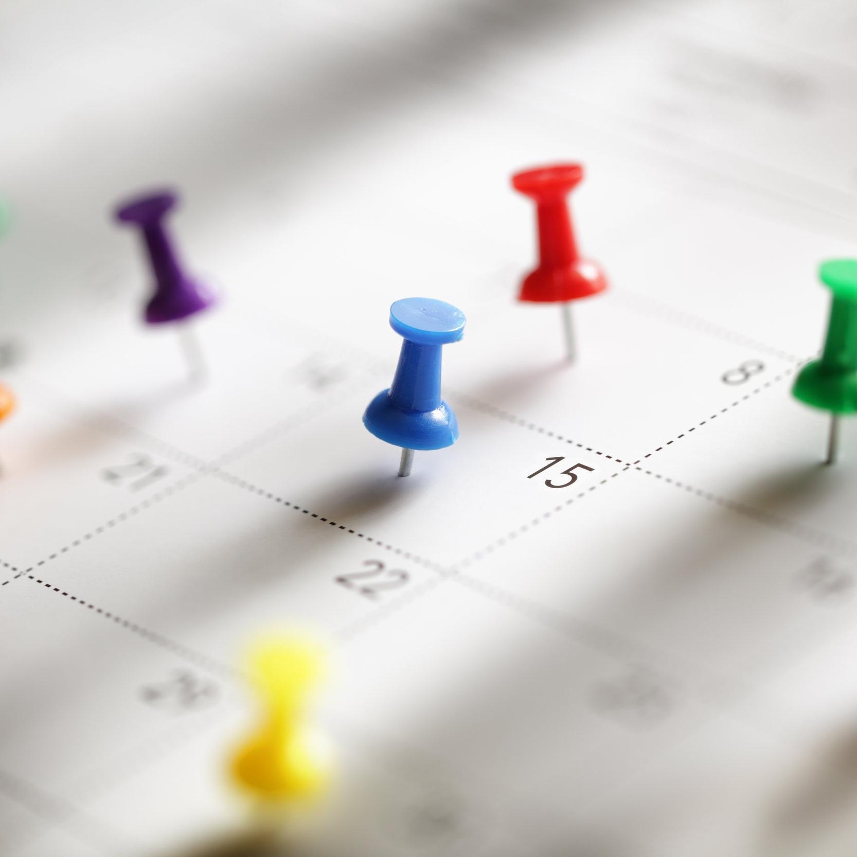 calendar with pins.jpeg