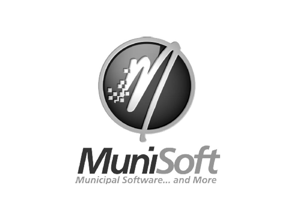 Munisoft Established Consultant
