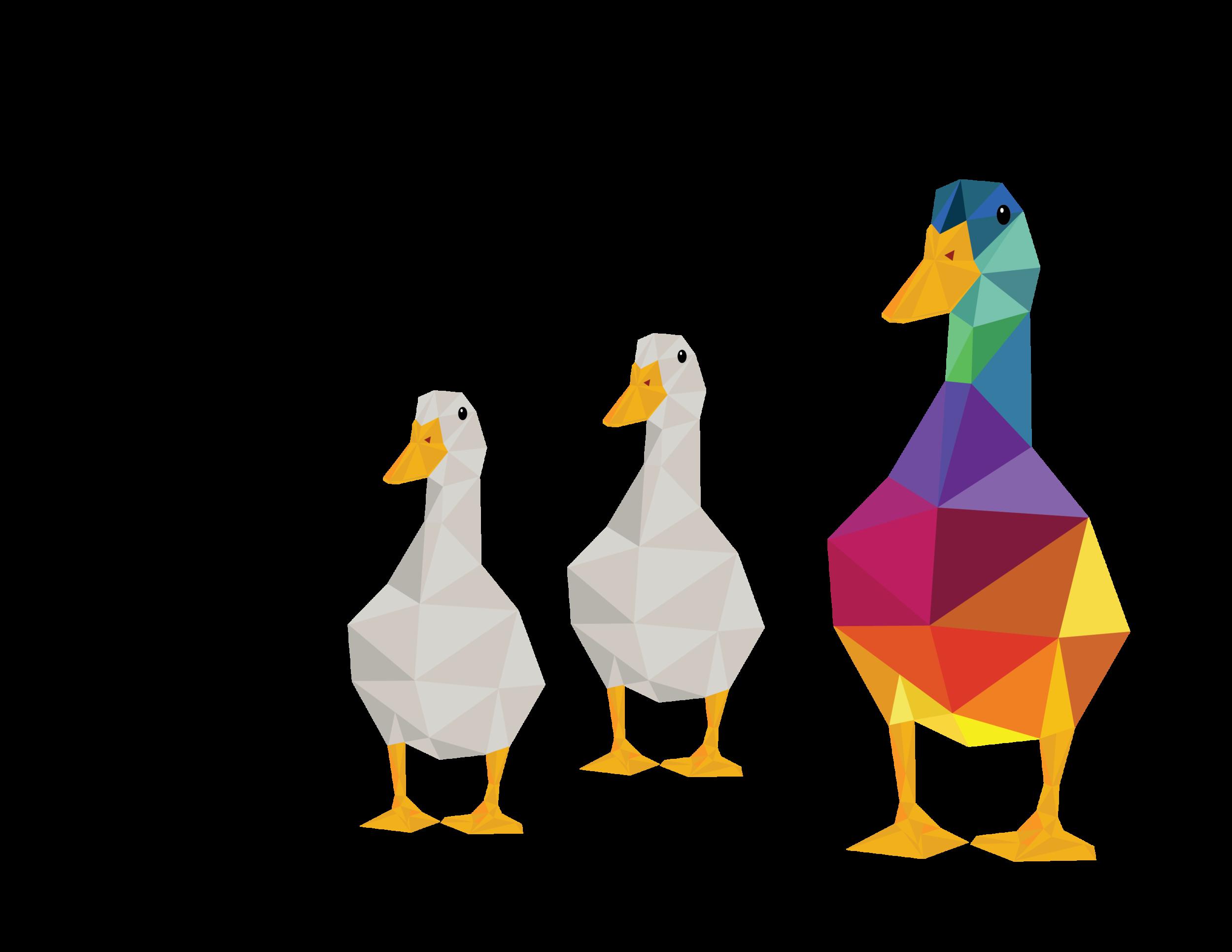 Duck Duck Goose Regina SK