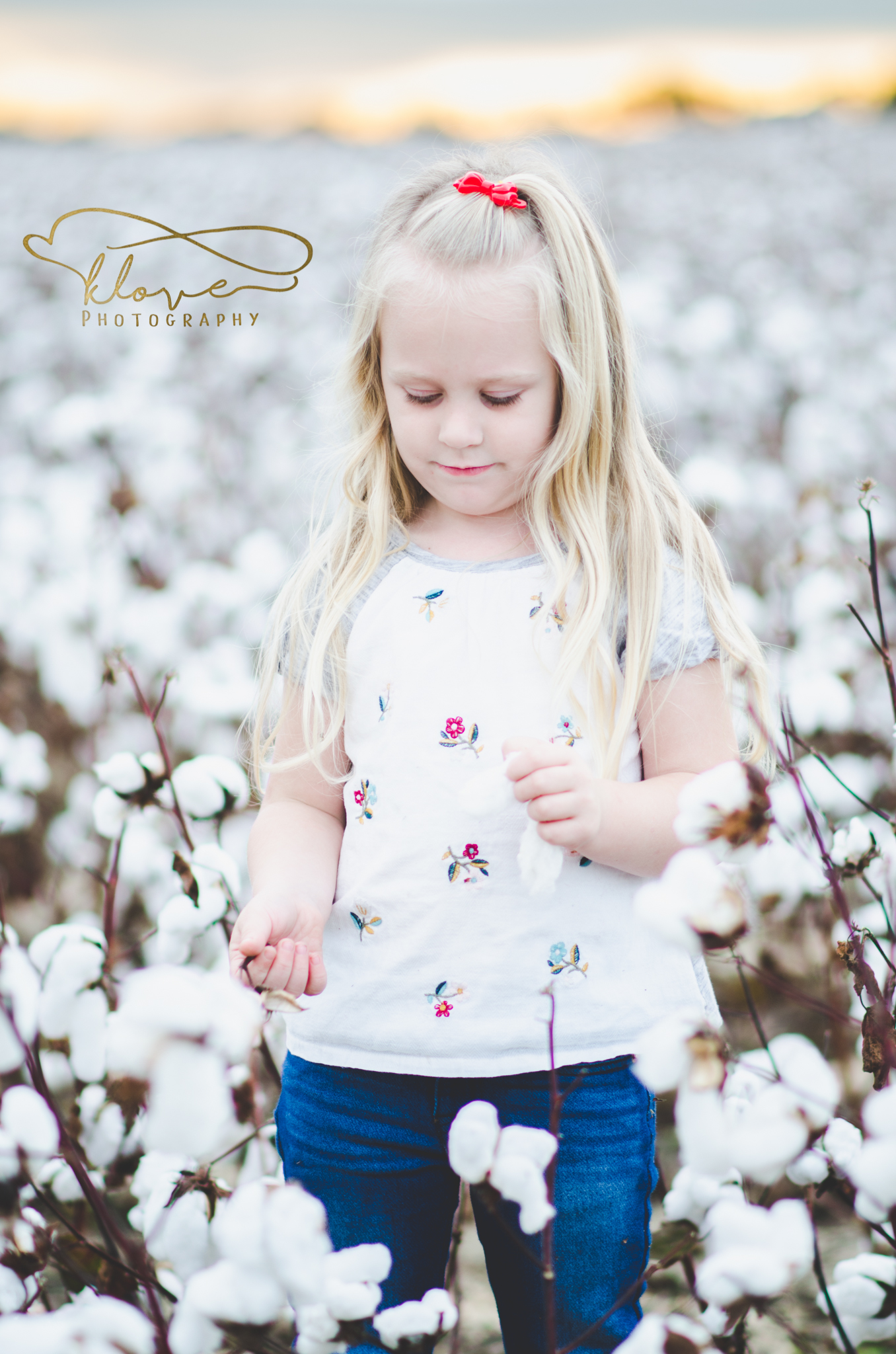 Cotton, - the snow of the South.