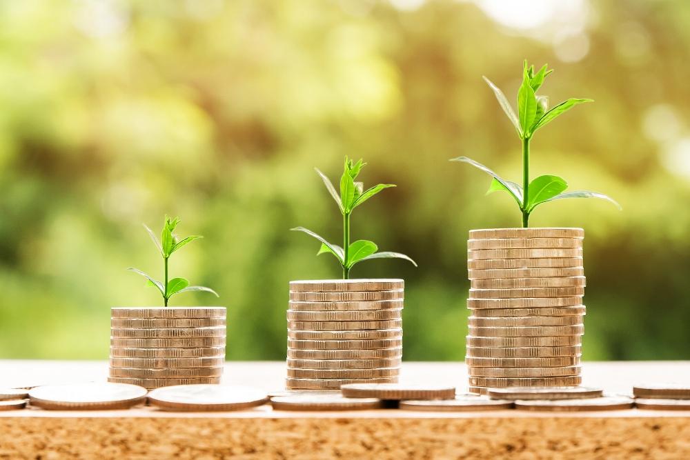 growing coins.jpg